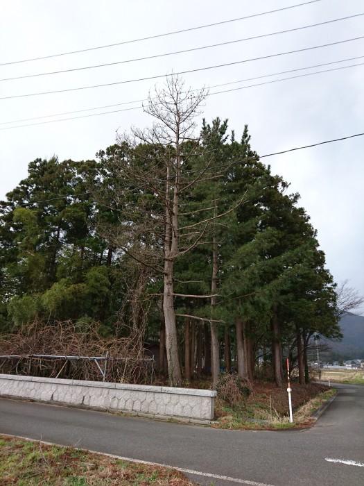 DSC_0588