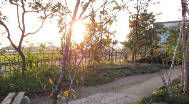 新潟市 I邸 庭園11b_works5_8