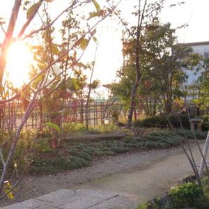 新潟市 I邸 庭園11b_works5_9