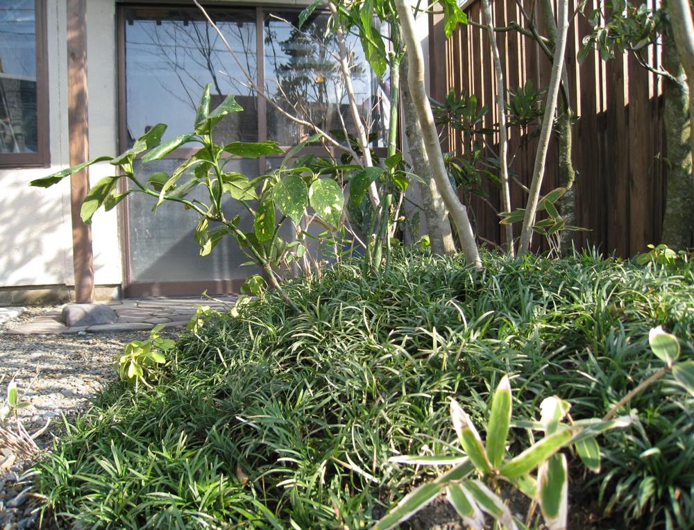 自宅の庭2 12b_works7_10